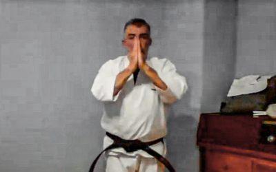 Clases online para sus kenshis más pequeños
